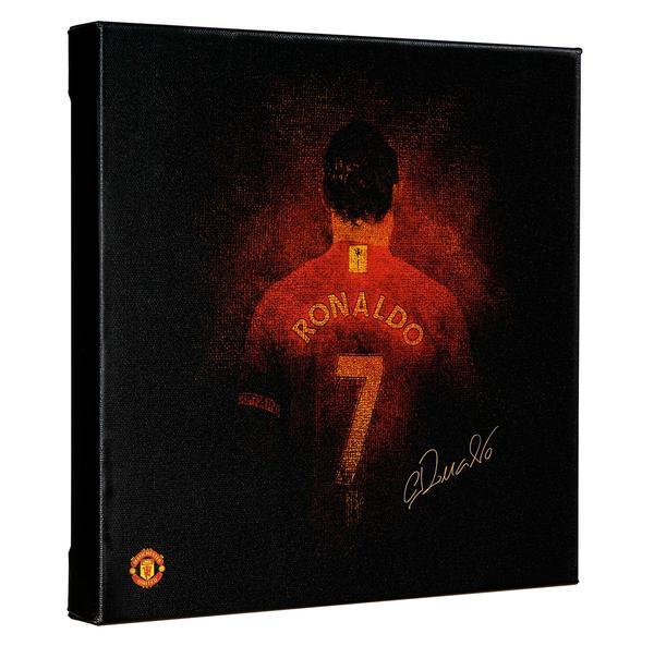 Redback - Ronaldo_canvas
